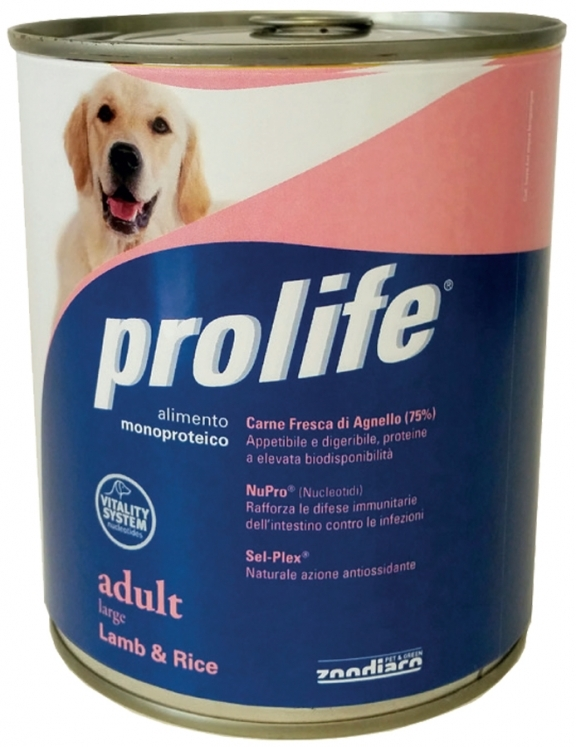 Complete pet food full of beef with rice for dogs from 16 months old.
